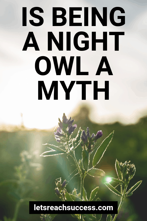 Are you a night owl or an early bird? Learn why the former might be a myth and how to start waking up early: #nightowl #earlybird #morninghabits #morningroutine #lifehacks #successtips