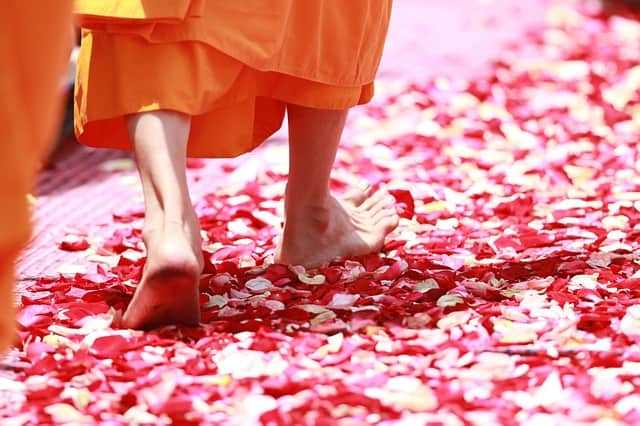 spiritual lessons from buddhist monks